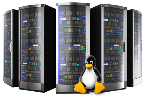 Linux Shared Web Hosting